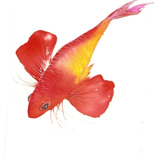 Como pez volador...
